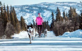 драйвовий зимовий біг